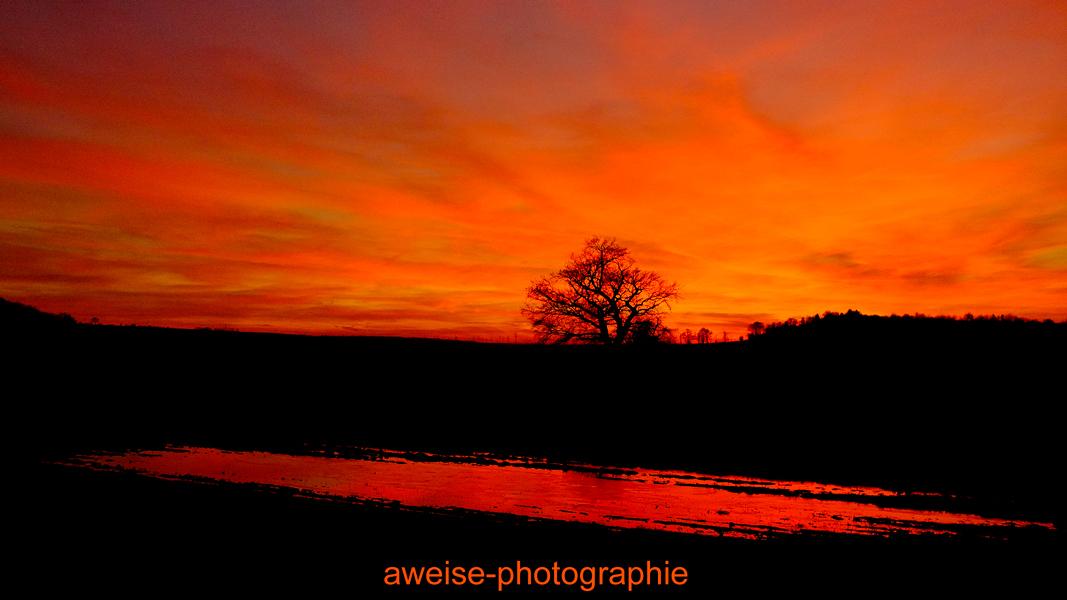 Sonnenuntergang  zwischen  Lieskau und Bennstedt