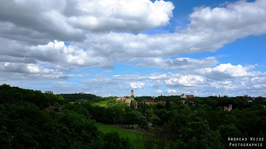 Saaletal mit Burg Giebichenstein vom Amselgrund gesehen