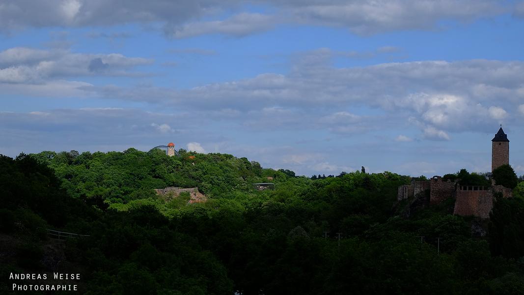 Bergzoo Halle mit der Burg