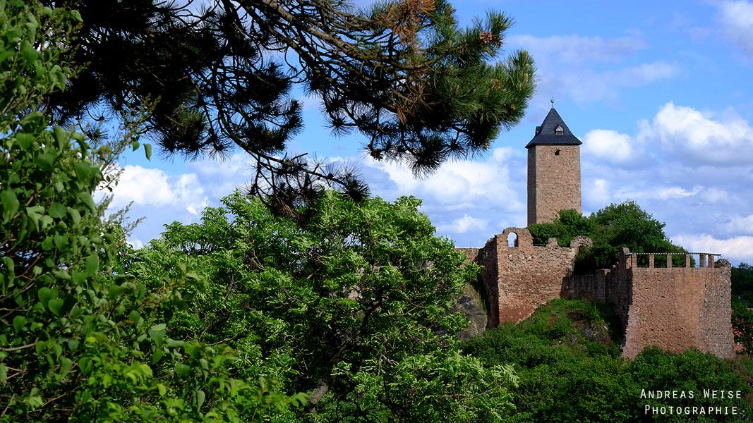 die Burg vom Amselgrund aus