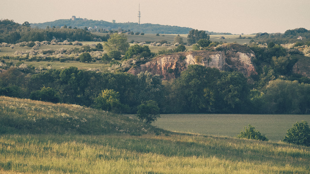 Blick über das Saaletal Richtung Petersberg