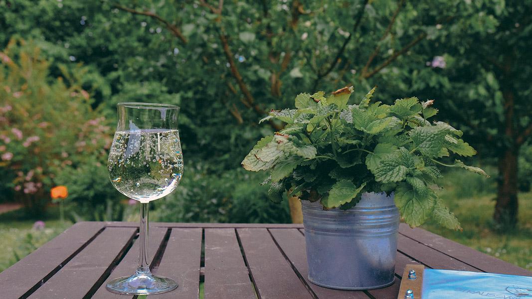 Straußenwirtschaft in der Welle bei Langenbogen , leckere Weinschorle