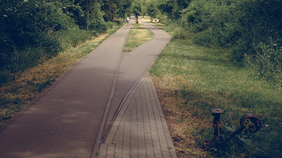 Pulverweide , der Weg wird zweigleisig