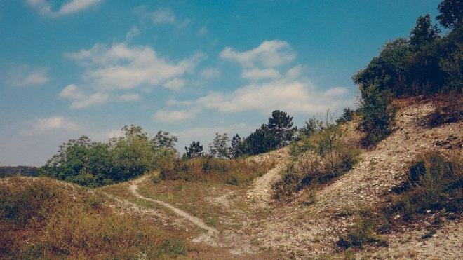 Flächennaturdenkmal Schumanns Berg