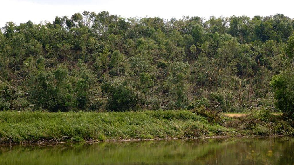 Blick über die Saale auf den völlig zerstörten Wald bei Neuragoczy
